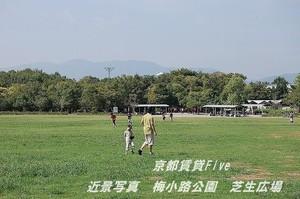 京都梅小路公園芝生広場