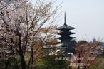祇園 高台寺